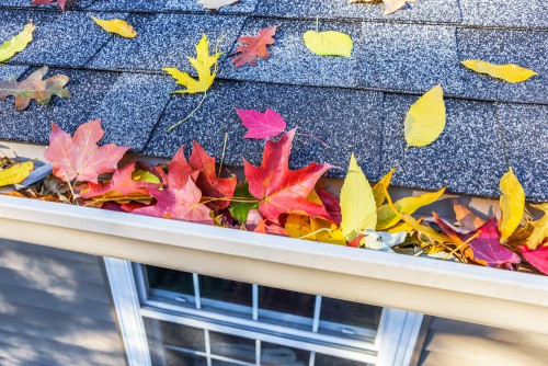 Give Your Home An Autumn Cleaning Blitz by Cleanhome Sussex